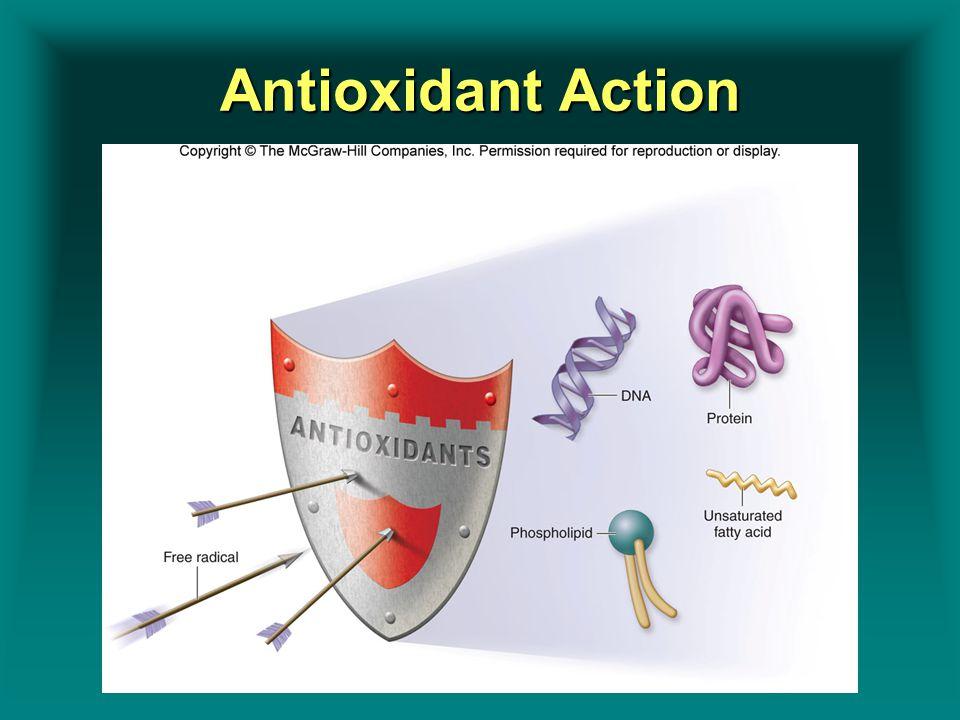 Insert Figure 8.3Insert Figure 8.3 Antioxidant Action