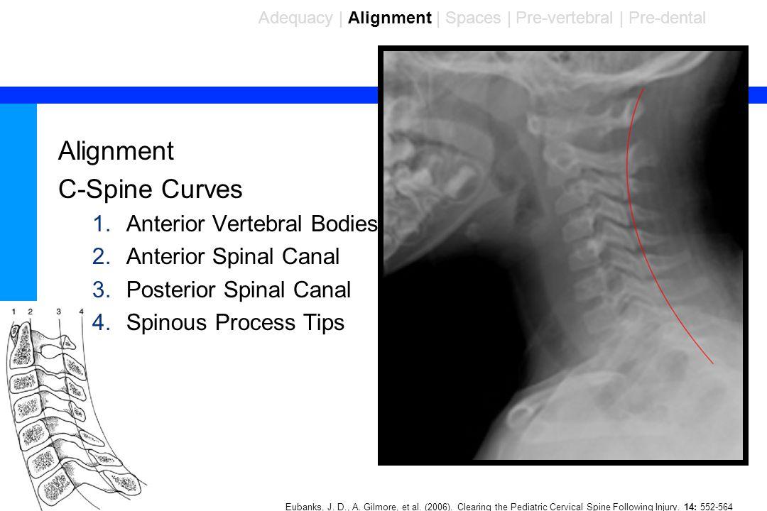 87 Alignment C-Spine Curves 1.Anterior Vertebral Bodies 2.Anterior Spinal Canal 3.Posterior Spinal Canal 4.Spinous Process Tips Adequacy | Alignment | Spaces | Pre-vertebral | Pre-dental Eubanks, J.