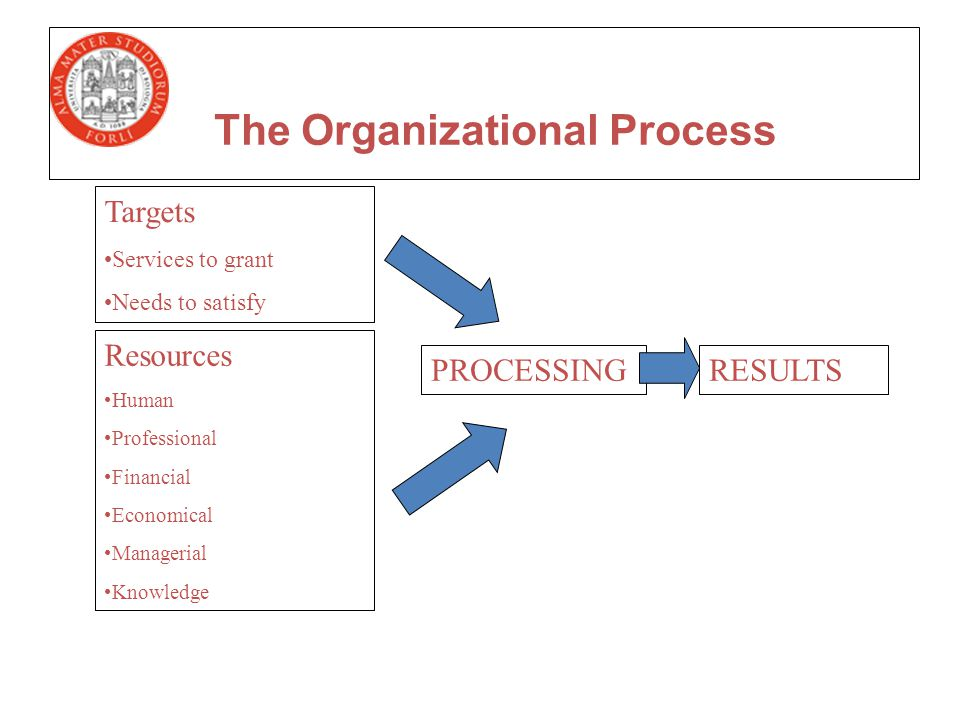 Targets Services to grant Needs to satisfy Resources Human Professional Financial Economical Managerial Knowledge PROCESSINGRESULTS The Organizational Process