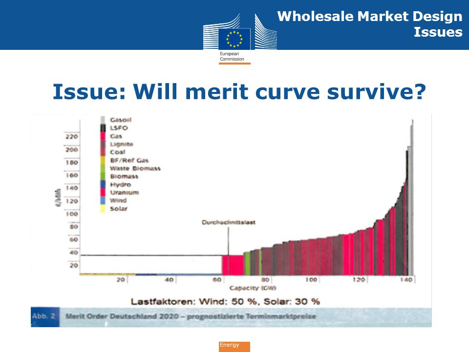 Energy Wholesale Market Design Issues Issue: Will merit curve survive?