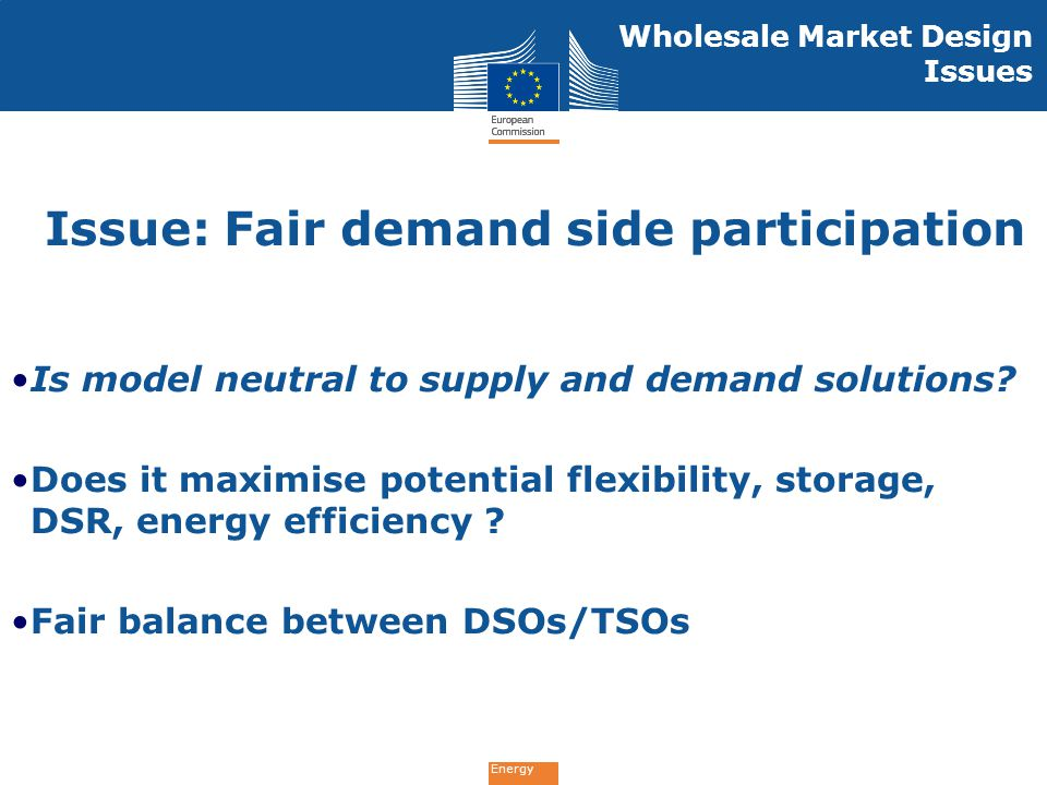 Energy Is model neutral to supply and demand solutions? Does it maximise potential flexibility, storage, DSR, energy efficiency ? Fair balance between
