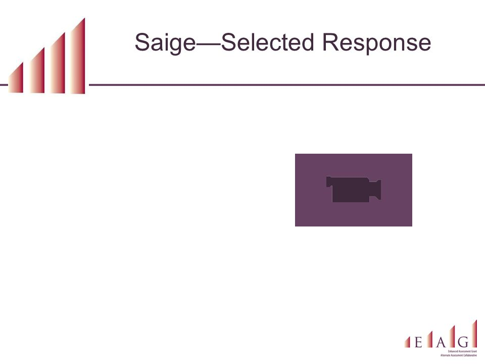 Saige—Selected Response