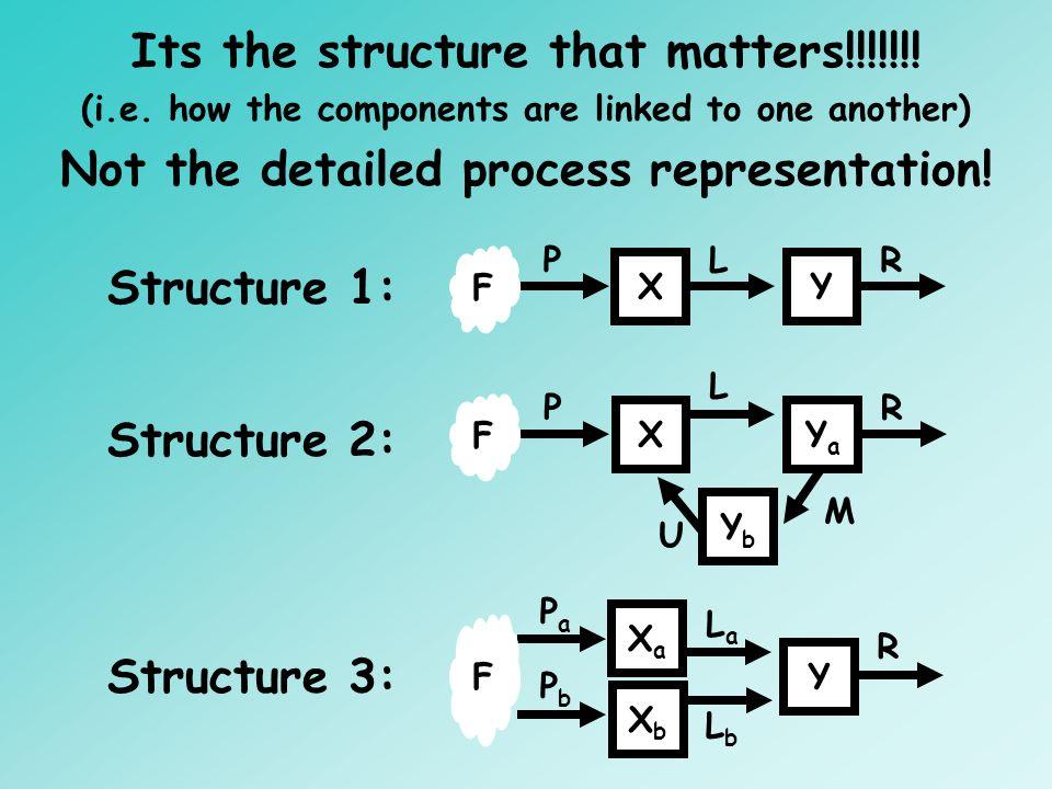 XY PLR F Structure 1: Structure 3: XaXa Y PaPa LaLa R F XbXb PbPb LbLb Structure 2: XYaYa P L R U F YbYb M Its the structure that matters!!!!!!! (i.e.