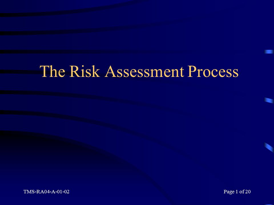TMS-RA04-A-01-02Page 1 of 20 The Risk Assessment Process
