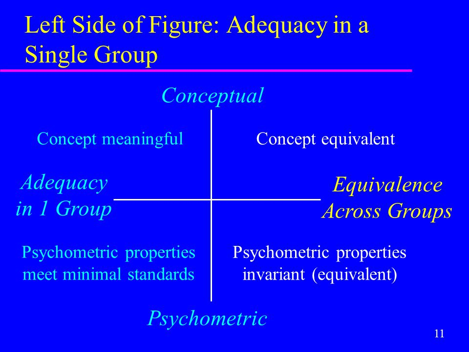11 Left Side of Figure: Adequacy in a Single Group Conceptual Psychometric Adequacy in 1 Group Equivalence Across Groups Concept equivalent Psychometr