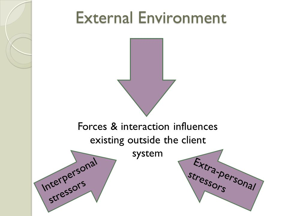External Environment Forces & interaction influences existing outside the client system Extra-personal stressors Interpersonal stressors