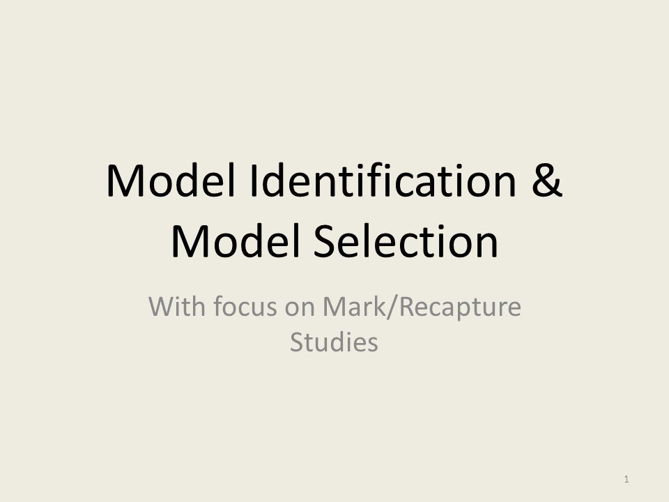 Model Identification & Model Selection With focus on Mark/Recapture Studies 1