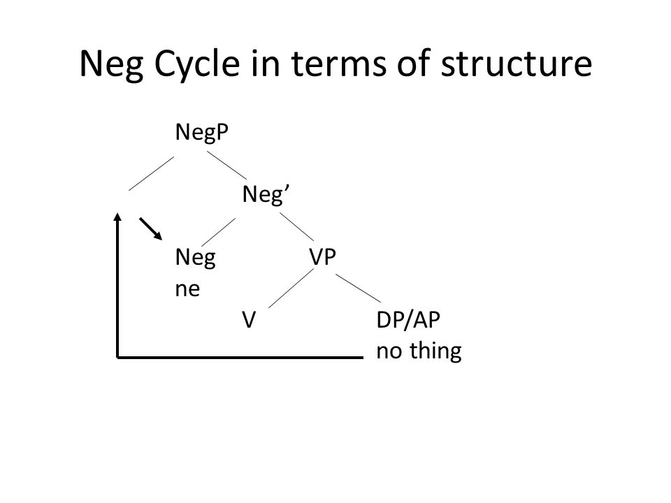 Neg Cycle in terms of structure NegP Neg' NegVP ne VDP/AP no thing