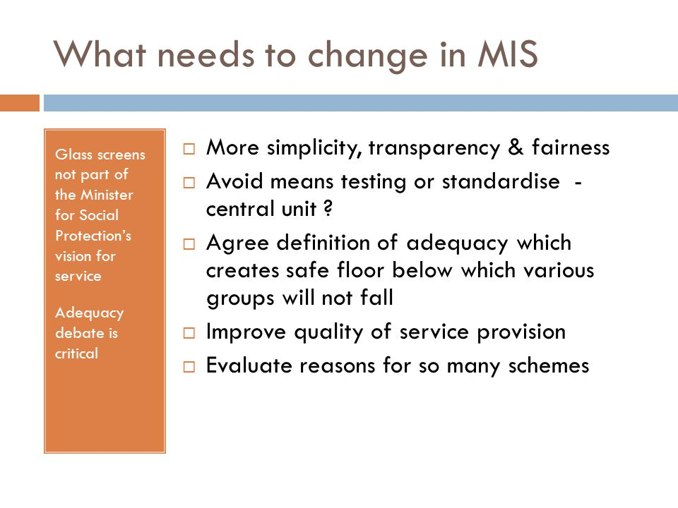 What needs to change in MIS Glass screens not part of the Minister for Social Protection's vision for service Adequacy debate is critical  More simplicity, transparency & fairness  Avoid means testing or standardise - central unit .