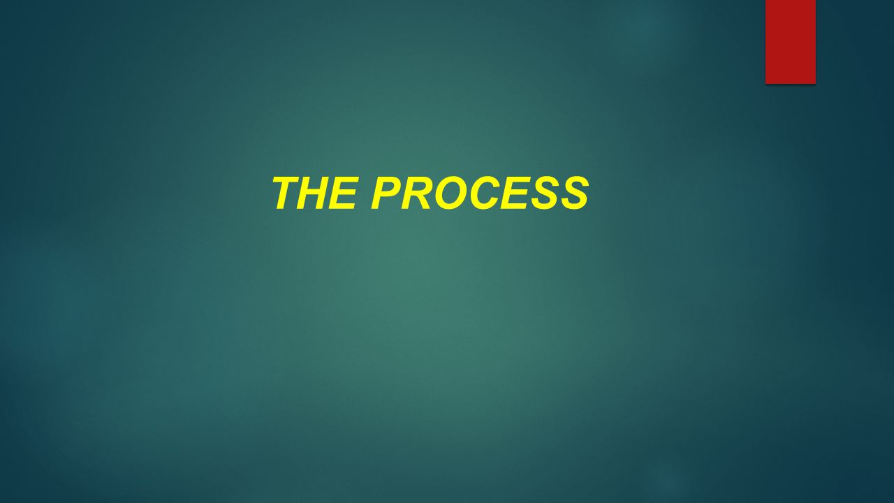 THE PROCESS