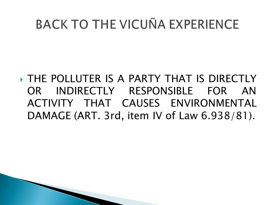  THE POLLUTER IS A PARTY THAT IS DIRECTLY OR INDIRECTLY RESPONSIBLE FOR AN ACTIVITY THAT CAUSES ENVIRONMENTAL DAMAGE (ART.