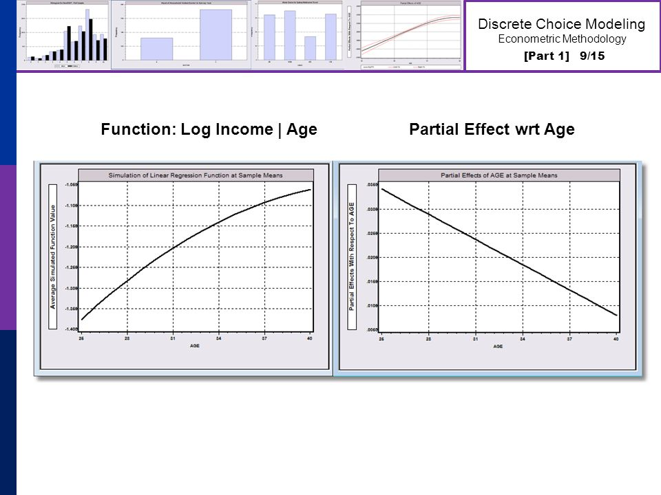 [Part 1] 9/15 Discrete Choice Modeling Econometric Methodology Function: Log Income | Age Partial Effect wrt Age