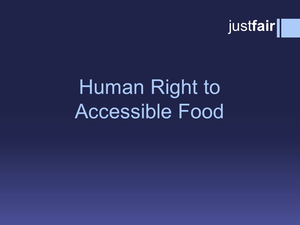 Human Right to Accessible Food justfair