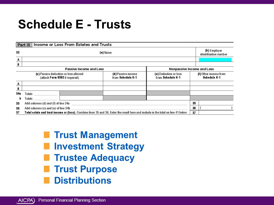 Personal Financial Planning Section Trust Management Investment Strategy Trustee Adequacy Trust Purpose Distributions Schedule E - Trusts