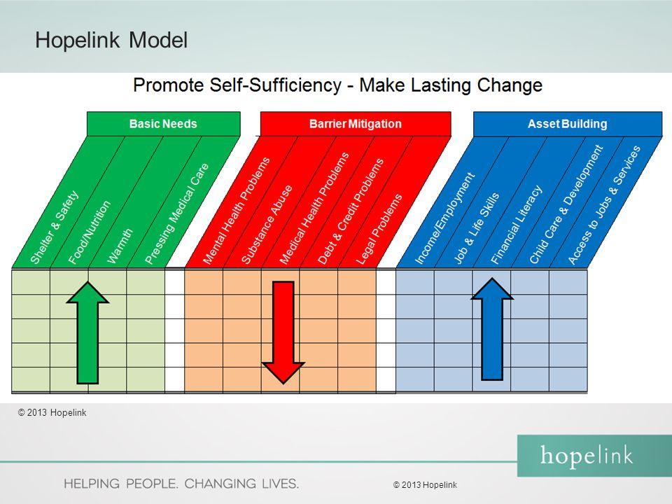 Hopelink Model