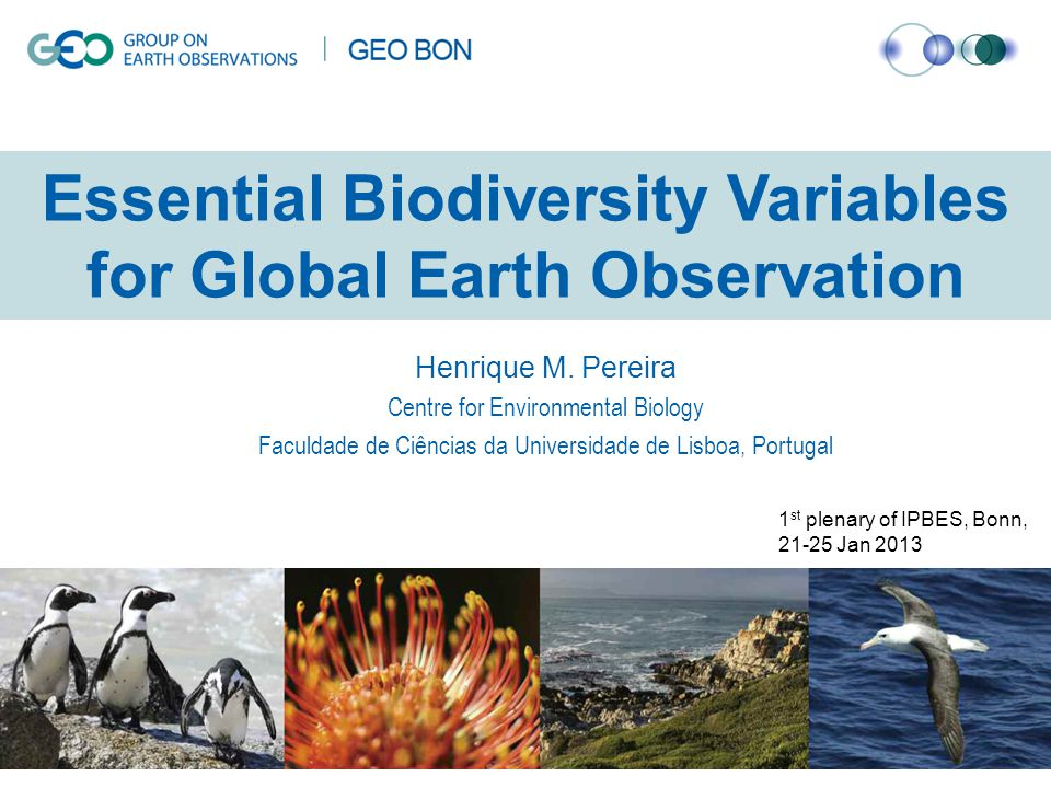 Essential Biodiversity Variables for Global Earth Observation Henrique M.
