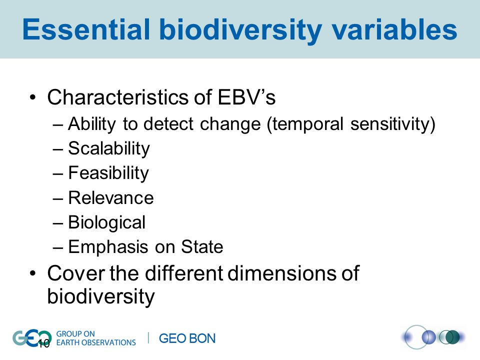 Essential biodiversity variables Characteristics of EBV's –Ability to detect change (temporal sensitivity) –Scalability –Feasibility –Relevance –Biological –Emphasis on State Cover the different dimensions of biodiversity 10