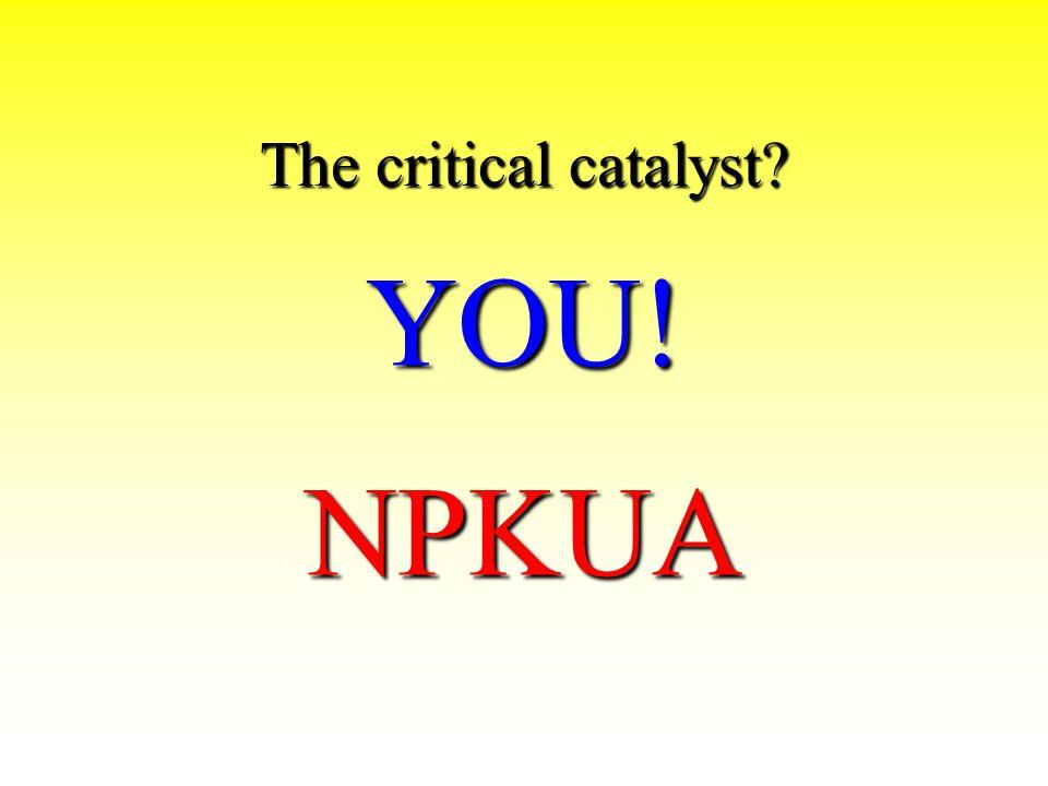The critical catalyst YOU! NPKUA