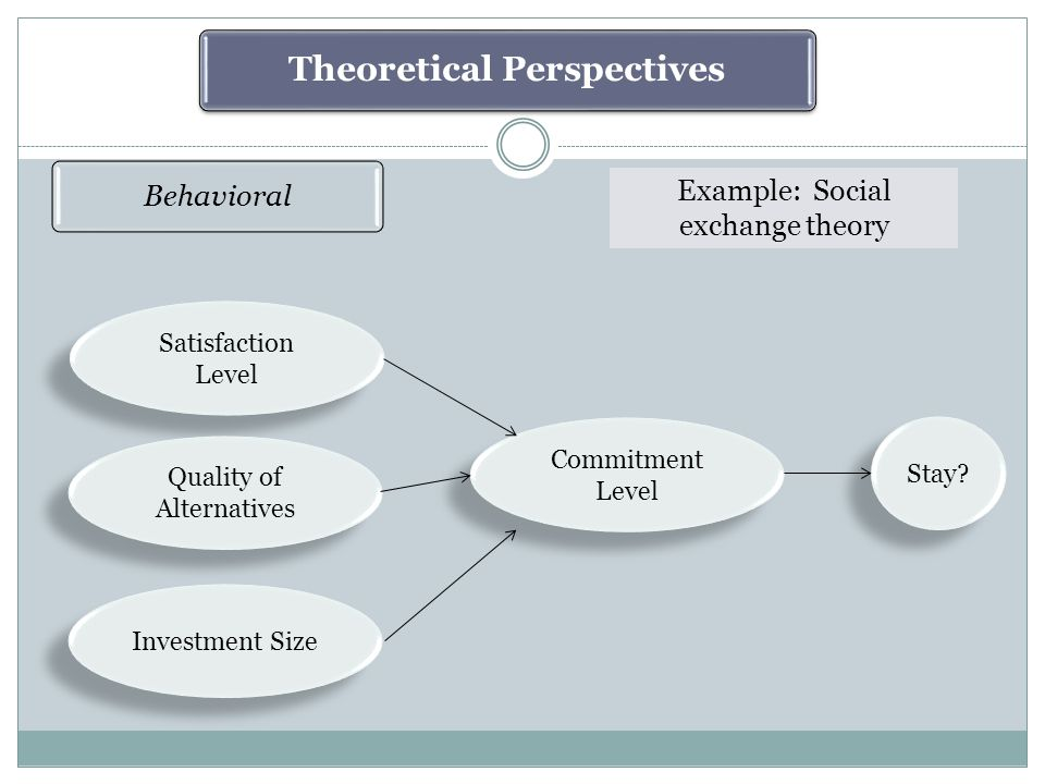 Theoretical Perspectives Behavioral Example: Social exchange theory Satisfaction Level Satisfaction Level Quality of Alternatives Investment Size Commitment Level Stay