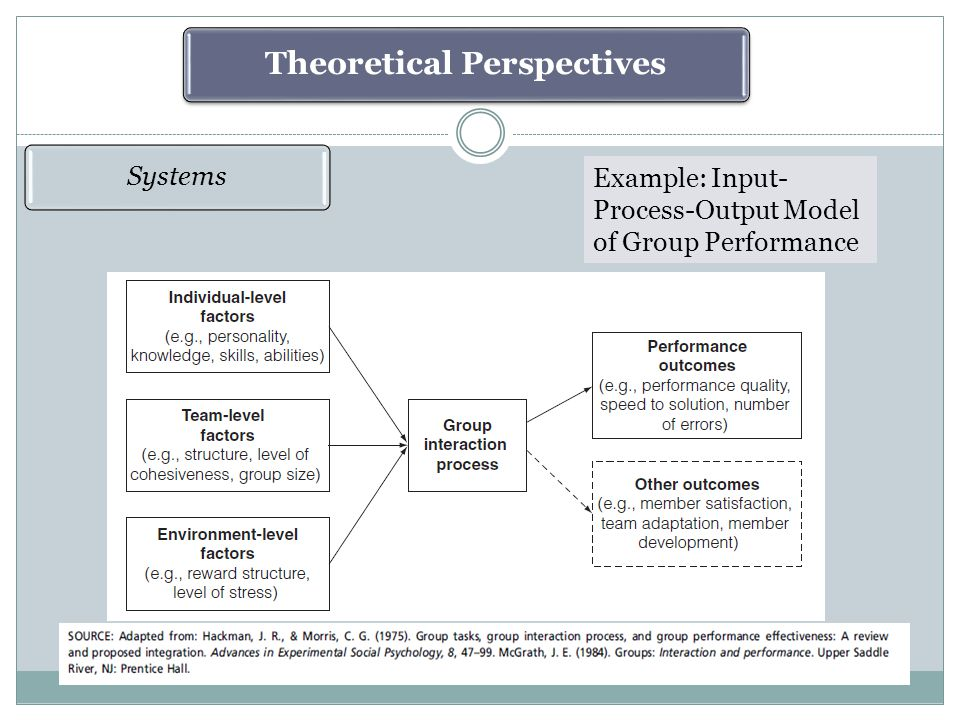 Theoretical Perspectives Systems Example: Input- Process-Output Model of Group Performance