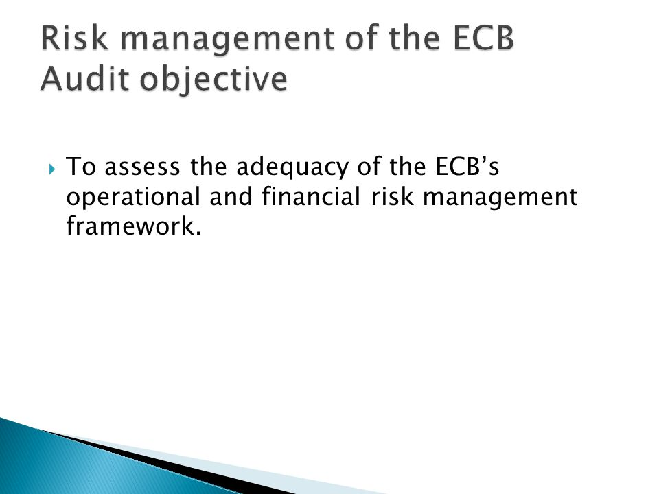  To assess the adequacy of the ECB's operational and financial risk management framework.