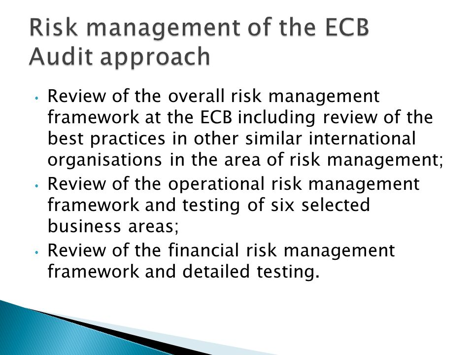 Review of the overall risk management framework at the ECB including review of the best practices in other similar international organisations in the area of risk management; Review of the operational risk management framework and testing of six selected business areas; Review of the financial risk management framework and detailed testing.