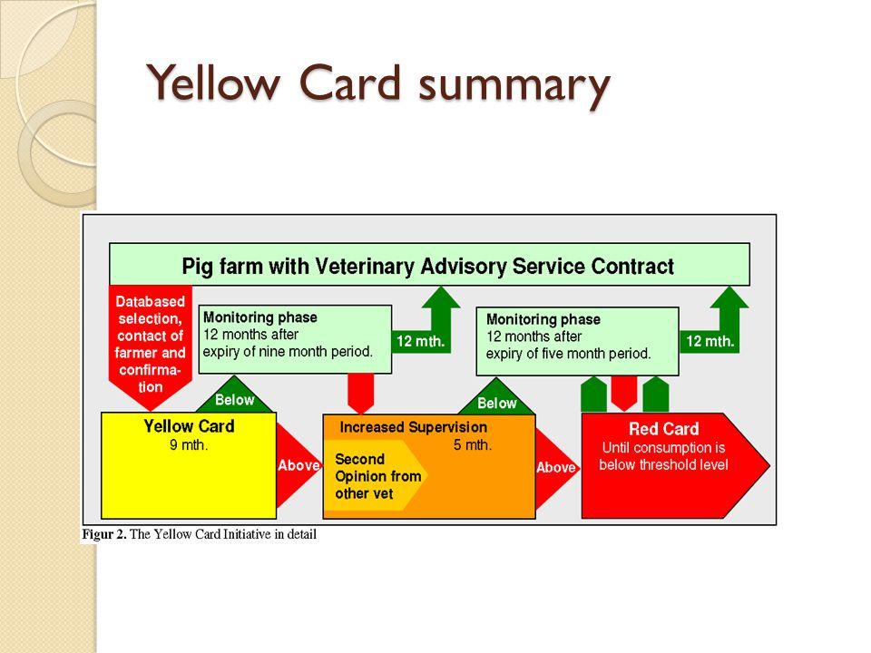 Yellow Card summary