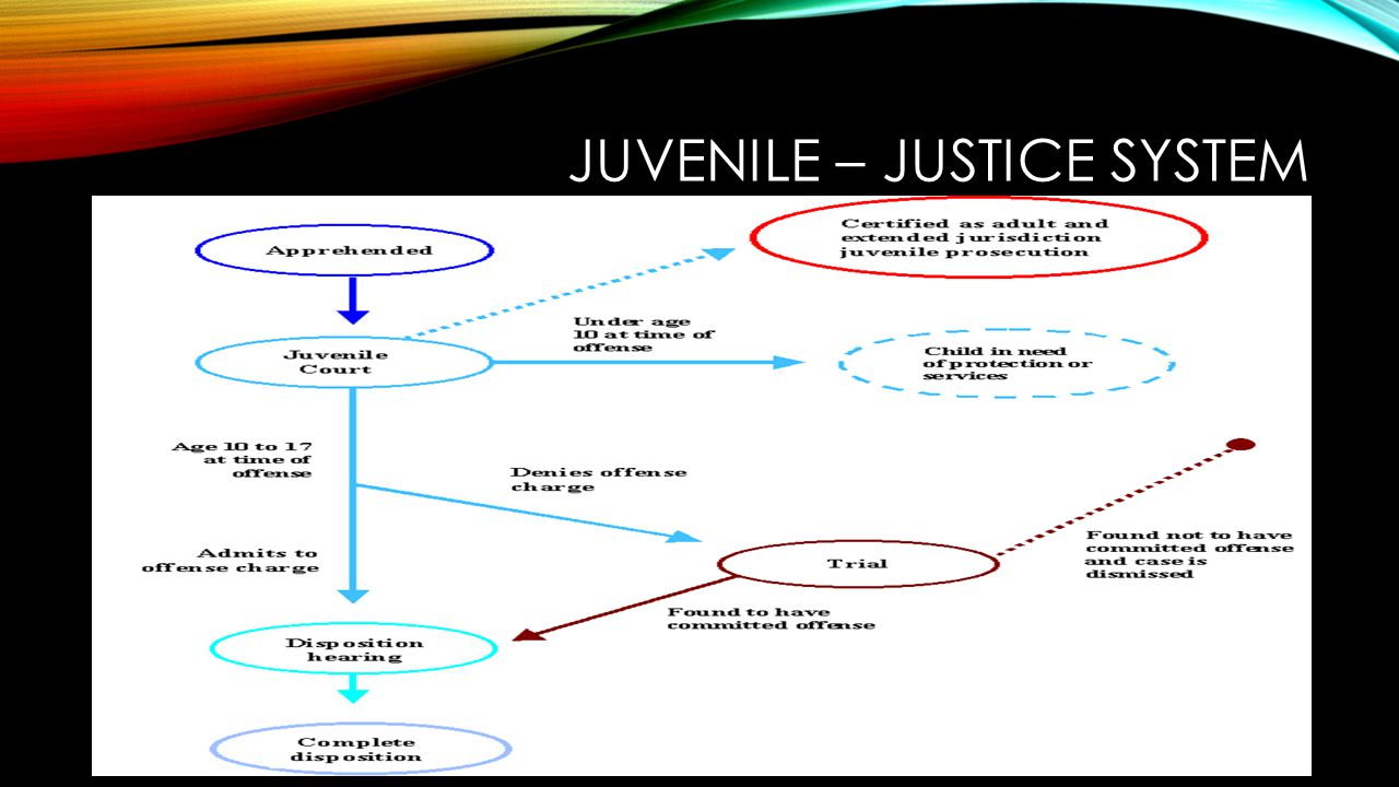 SIMILARITIES ADULT CRIMINAL JUSTICE Offenses Elements of offense Right to an attorney Charging documents Burden of Proof.