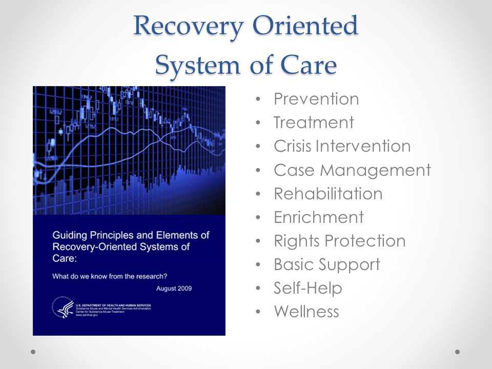 Recovery Oriented System of Care Prevention Treatment Crisis Intervention Case Management Rehabilitation Enrichment Rights Protection Basic Support Self-Help Wellness
