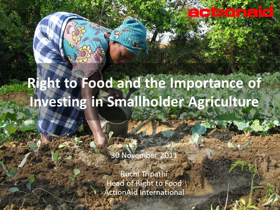 30 November 2011 Ruchi Tripathi Head of Right to Food ActionAid International Right to Food and the Importance of Investing in Smallholder Agriculture