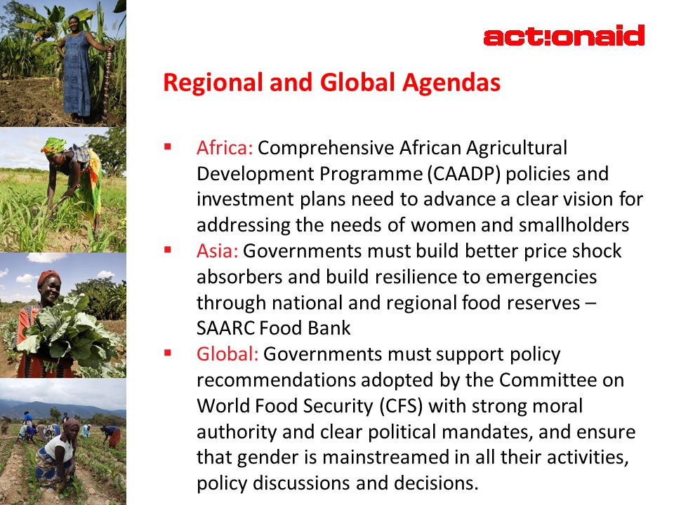 Regional and Global Agendas  Africa: Comprehensive African Agricultural Development Programme (CAADP) policies and investment plans need to advance a clear vision for addressing the needs of women and smallholders  Asia: Governments must build better price shock absorbers and build resilience to emergencies through national and regional food reserves – SAARC Food Bank  Global: Governments must support policy recommendations adopted by the Committee on World Food Security (CFS) with strong moral authority and clear political mandates, and ensure that gender is mainstreamed in all their activities, policy discussions and decisions.
