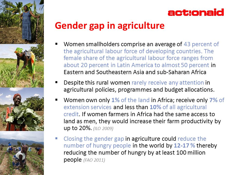 Gender gap in agriculture  Women smallholders comprise an average of 43 percent of the agricultural labour force of developing countries.