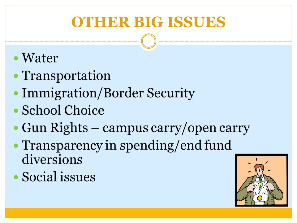 OTHER BIG ISSUES Water Transportation Immigration/Border Security School Choice Gun Rights – campus carry/open carry Transparency in spending/end fund diversions Social issues