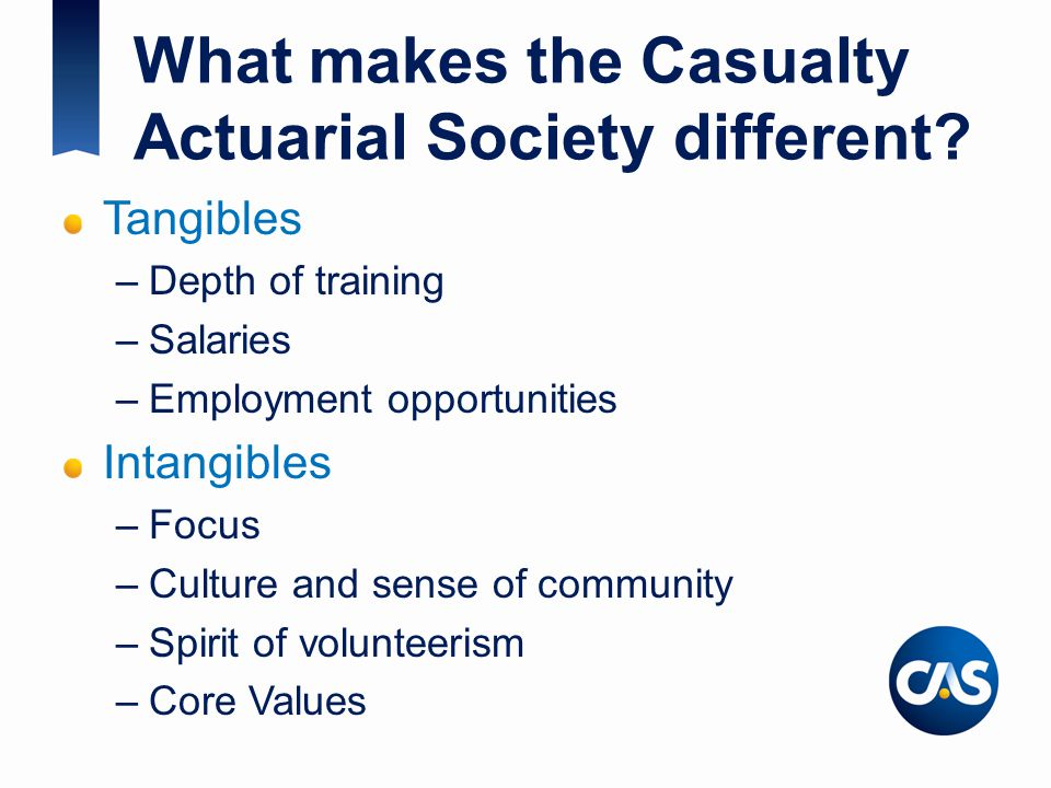 What makes the Casualty Actuarial Society different.