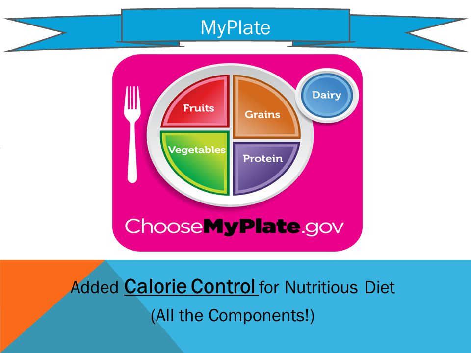 Added Calorie Control for Nutritious Diet (All the Components!) MyPlate Click to go to Website!