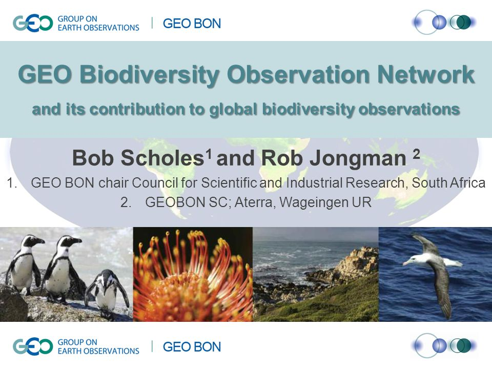 Group on Earth Observations Biodiversity Observation Network A global partnership to promote the collection, sharing, management, analysis and & reporting of data relating to the status of the world's biodiversity, across all taxa and domains, for all aspects of biodiversity at the gene, species and ecosystem levels Members of the network include most major international biodiversity-oriented organisations (such as IUCN, GBIF, Diversitas, UNEP-WCMC, UN-CBD), space agencies, regional sub-networks (Asia-Pacific, Arctic, Japan)