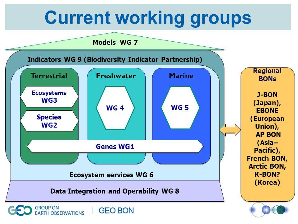 Current working groups Data Integration and Operability WG 8 Models WG 7 Terrestrial Species WG2 Species WG2 Ecosystems WG3 Ecosystems WG3 Freshwater WG 4 Marine WG 5 Genes WG1 Regional BONs J-BON (Japan), EBONE (European Union), AP BON (Asia– Pacific), French BON, Arctic BON, K-BON.