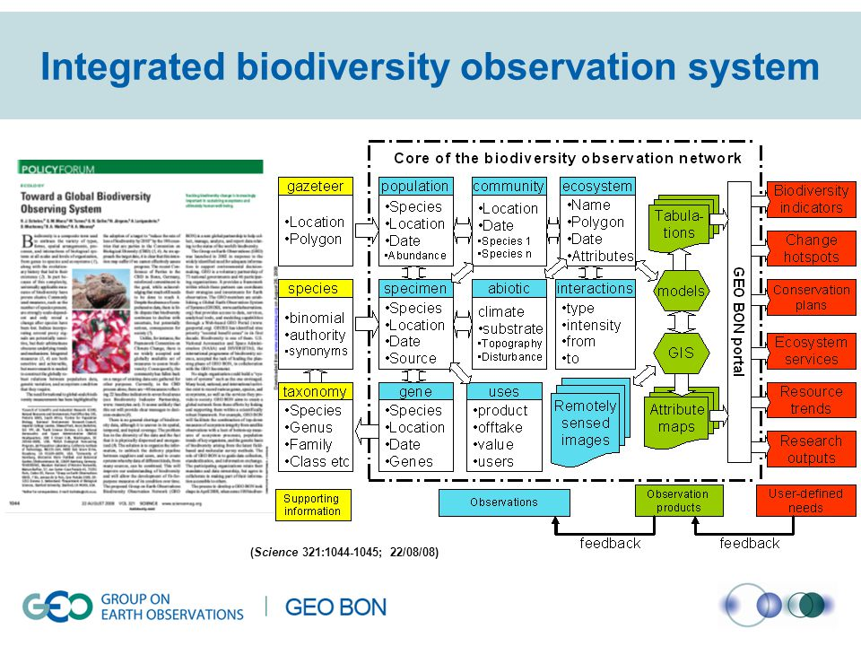 Integrated biodiversity observation system (Science 321:1044-1045; 22/08/08)