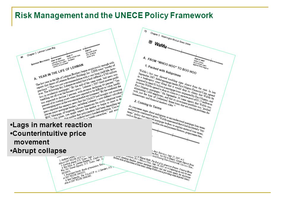 Lags in market reaction Counterintuitive price movement Risk Management and the UNECE Policy Framework