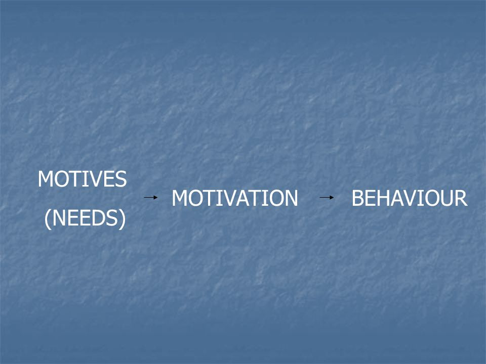 MOTIVES (NEEDS) MOTIVATIONBEHAVIOUR