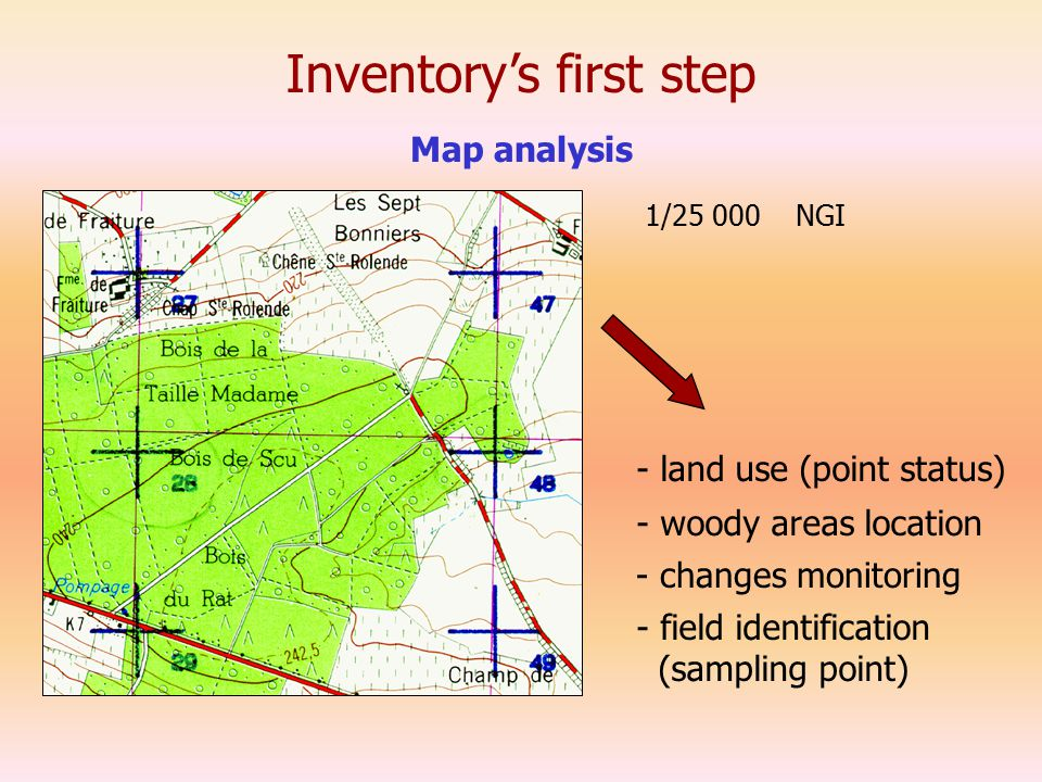 Inventory's first step Map analysis 1/25 000 NGI - land use (point status) - changes monitoring - woody areas location - field identification (sampling point)