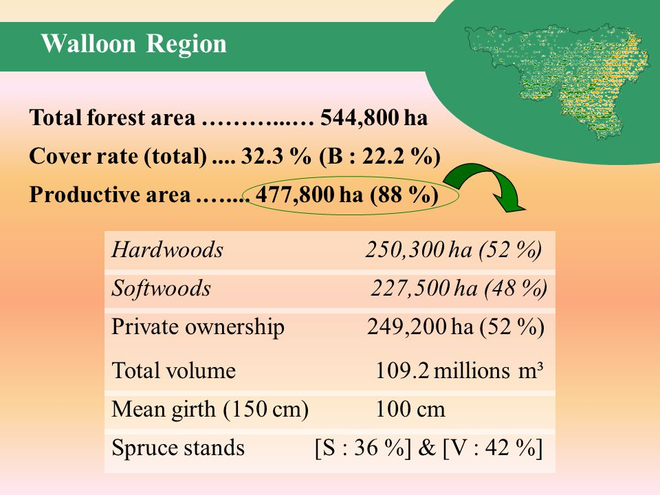 Walloon Region Total volume millions m³ Mean girth (150 cm) 100 cm Spruce stands [S : 36 %] & [V : 42 %] Total forest area ………...… 544,800 ha Cover rate (total)....