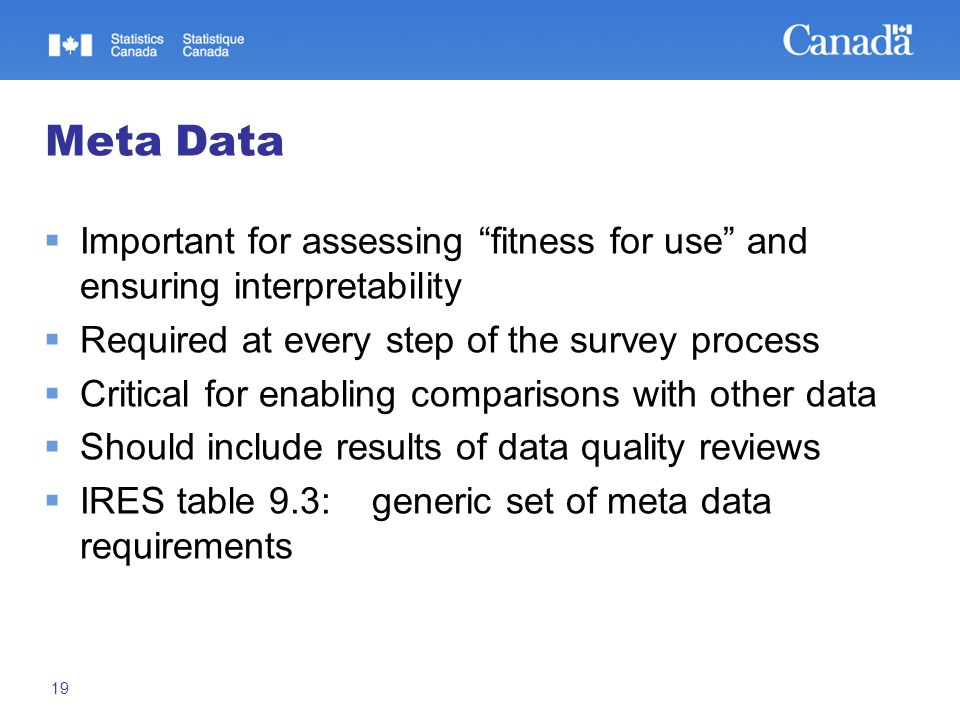 19 Meta Data  Important for assessing fitness for use and ensuring interpretability  Required at every step of the survey process  Critical for enabling comparisons with other data  Should include results of data quality reviews  IRES table 9.3: generic set of meta data requirements