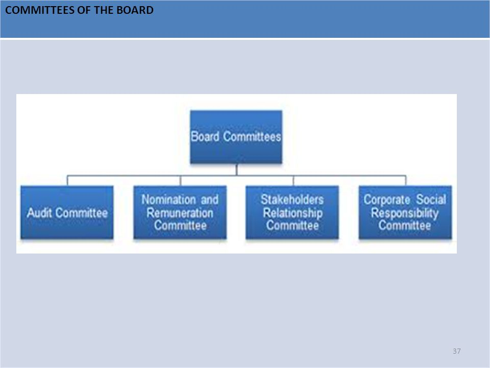 COMMITTEES OF THE BOARD 37