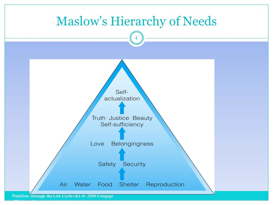 Maslow's Hierarchy of Needs Nutrition Through the Life Cycle-ch1-© 2009 Cengage - Wadsworth 4