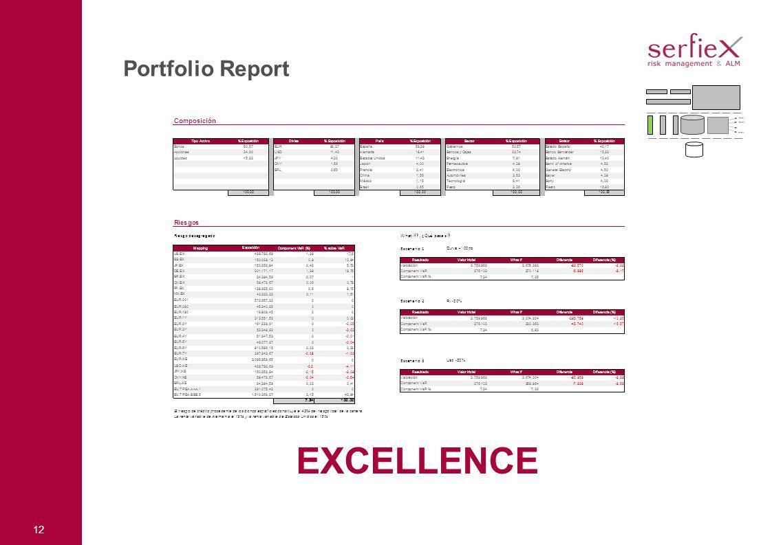 12 Portfolio Report EXCELLENCE