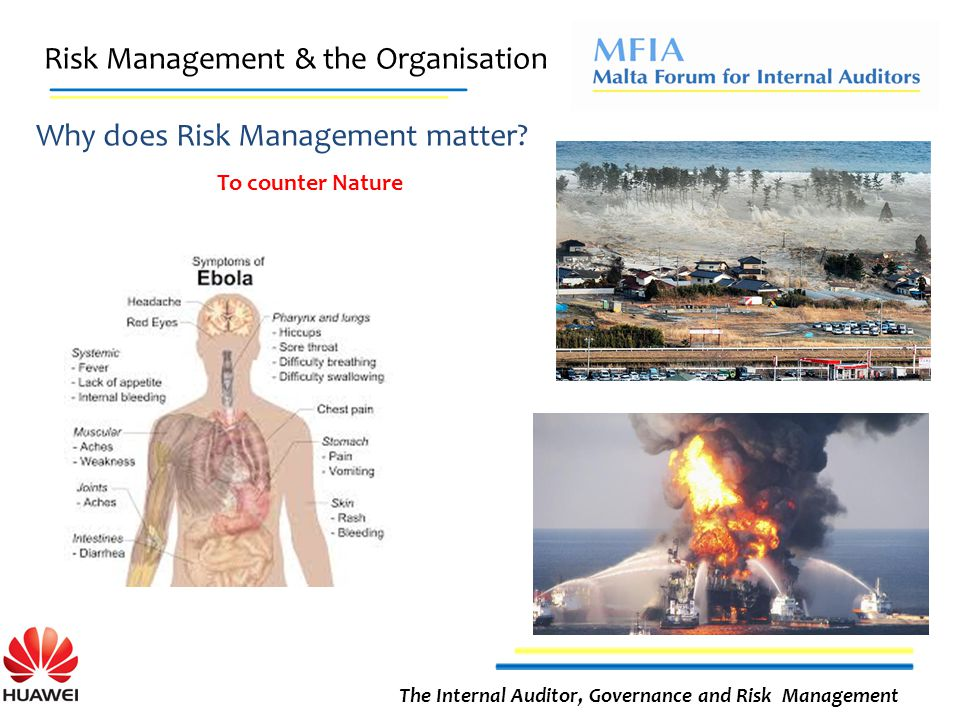 Risk Management & the Organisation The Internal Auditor, Governance and Risk Management Why does Risk Management matter.