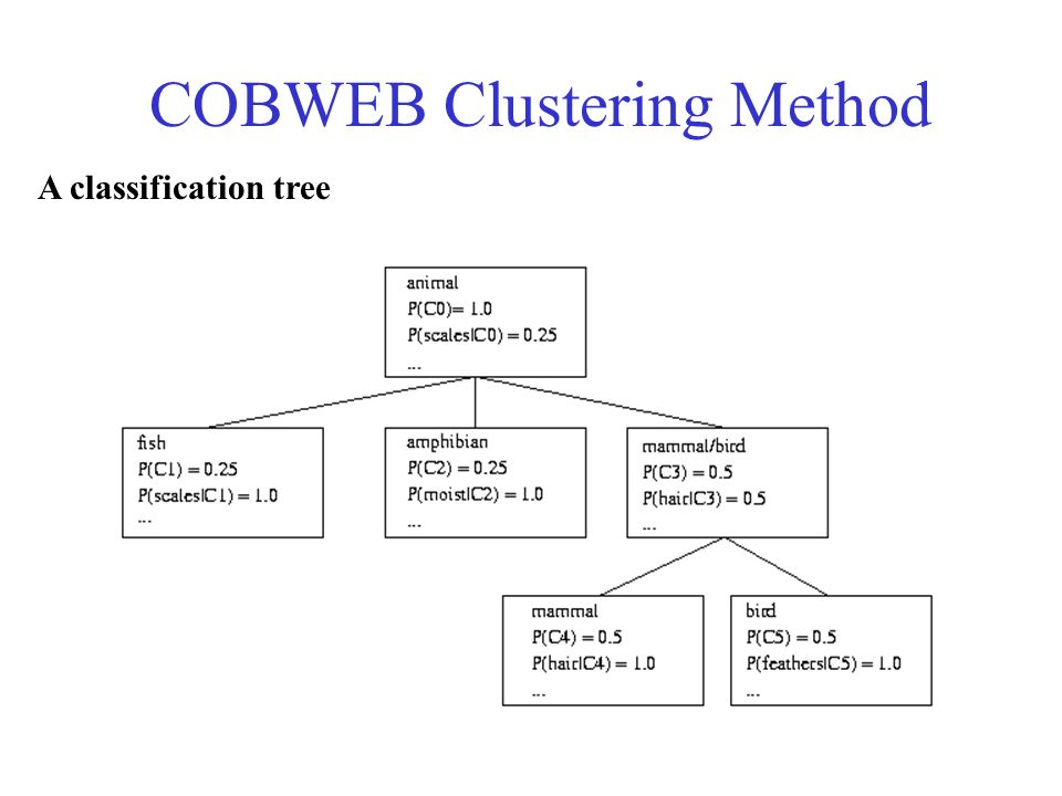 More on Conceptual Clustering Limitations of COBWEB –The assumption that the attributes are independent of each other is often too strong - correlation may exist –Not suitable for clustering large database data – skewed tree and expensive probability distributions (time and space complexity depends not only on the number of attributes but also on the number of values for these attributes) CLASSIT –an extension of COBWEB for incremental clustering of continuous data –suffers similar problems as COBWEB AutoClass (Cheeseman and Stutz, 1996) –Uses Bayesian statistical analysis to estimate the number of clusters –Popular in industry