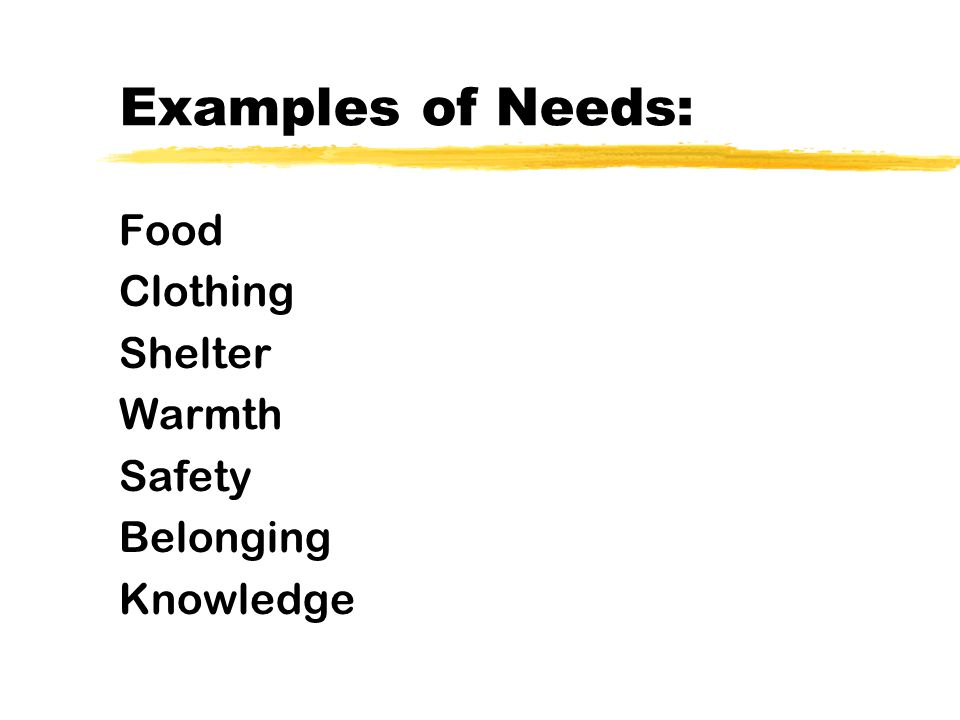 Examples of Needs: Food Clothing Shelter Warmth Safety Belonging Knowledge