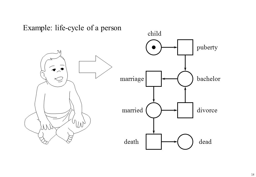 14 Example: life-cycle of a person bachelor child married puberty marriage divorce deathdead